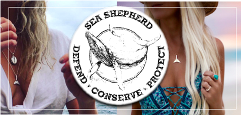 blog bannner sea shepherd